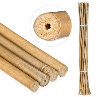 Bamboestokken 105 cm Decoratieve bamboestokken van natuurlijk materiaal